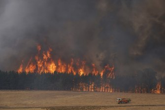 """The """"mega fire"""" is now 600,000 hectares in size."""