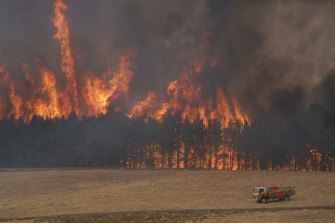 A forest fire tears through a pine plantation between Tooma and Tumbarumba in southern NSW.