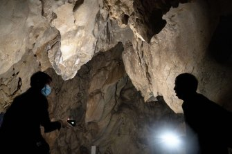 No data has been published on studies of the coronaviruses of Yunnan's bat population.