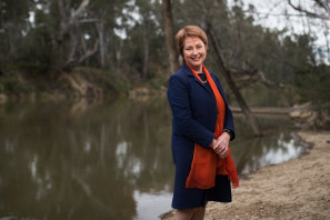 Suzanna Sheed, independent MP for Shepparton, is pleading with the Victorian government for more support.