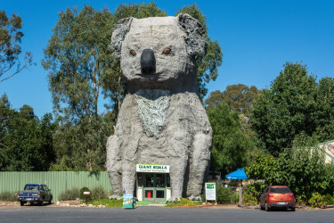 Giant Koala Victoria. One time use for Traveller only.