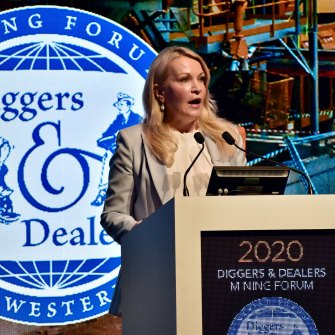 Fortescue Metals Group chief executive Elizabeth Gaines speaking at Kalgoorlie's Diggers and Dealers conference on Tuesday.