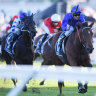 Legacy a proud one for Alizee as new Godolphin star steps up