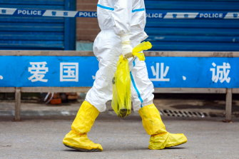 Investigators wish to determine the source of the virus, which has been linked to the Huanan Seafood Market.