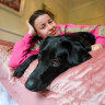 'It was just utter devastation': How a therapy dog saved Eliza from despair