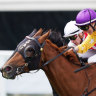 Mertens scores ride on Caulfield Cup late entrant Wolfe