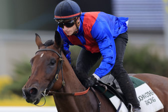 Lost And Running could be the X-factor in The Everest this year if he wins the Luskin Star Stakes at Rosehill on Saturday.