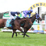Cup order unchanged as Princess Jenni claims Bendigo Cup