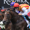 Guineas contender Peltzer looks for six of the best at Randwick
