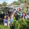 Community garden at Collingwood Children's Farm to be cleared