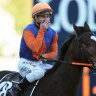 Family first policy pays off with Doncaster karma for Innes jnr