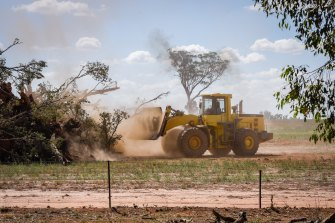 A front-end loader removes trees on a property near Junee in the Riverina.