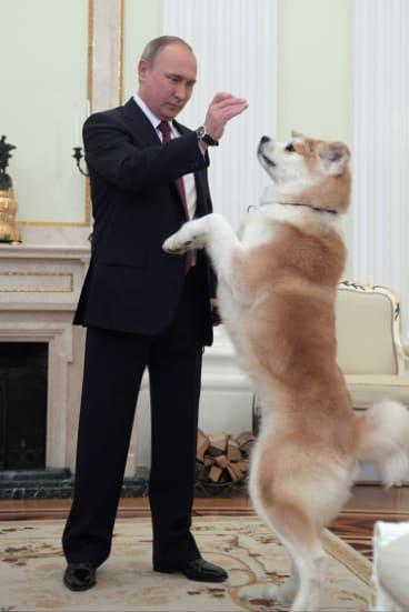 Russian President Vladimir Putin plays with his dog