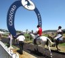 Tips and race-by-race preview for Gosford on Wednesday