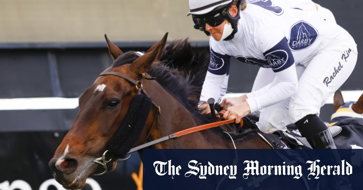 Racing-by-race preview and tips for Newcastle on Friday