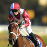 Bookies brace for Everest plunge on new Queen