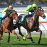 Dean Holland pilots Tralee Rose to victory in the Geelong Cup.