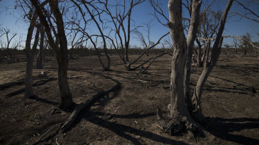 The drought is all part of God's plan, Sydney's Anglican Archbishop, the Reverend Glenn Davies, told Richard Glover.