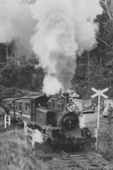 Puffing Billy c. 1950