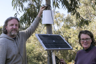 Dr Melissa Neave and Scott Rayburn with one of their 'sap sensors' on a tree at CERES Environment Park.