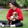 'No more': In five days, 3000 Queenslanders apply to be RSPCA foster carers