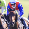 Hilal takes Bondi and has group 1 ambitions next year