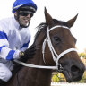 Waller has the team to break his own group 1 record