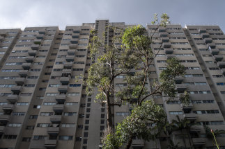 The estate's 18-storey Marton (pictured), Banks, Solander and Cook buildings are each home to more than 200 vulnerable residents.