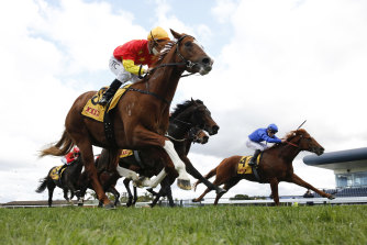 In The Congo takes out  the San Domenico Stakes at Kembla Grange last time out.