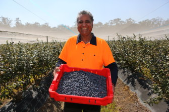 Kirbal Husna  has made the switch from bananas to blueberries.