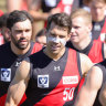 Tigers great Alex Rance joins Bombers as development coach