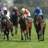 Race-by-race guide and tips for Rosehill on Saturday