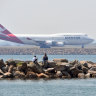 Qantas staff reluctant to report sexual harassment