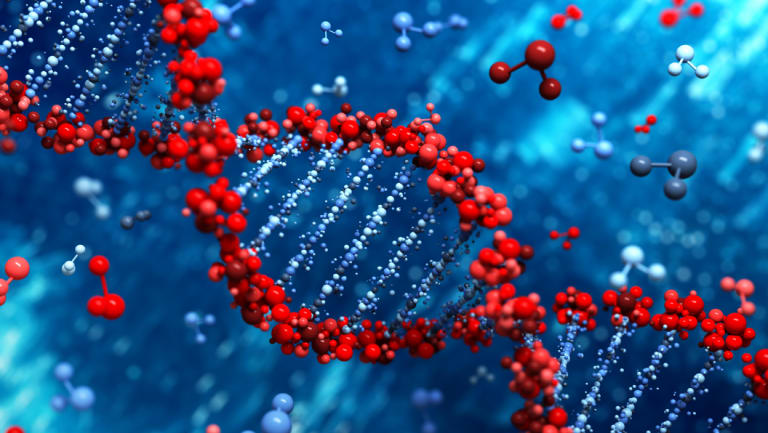 Your genome is the complete set of genetic instructions encoded in the two metres of DNA in most of your cells.