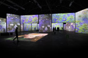 How the Monet & Friends exhibition will look when it opens at Sydney's Hall of Industries.