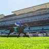 ATC sets aside $12m for replacement of cladding on Randwick grandstand