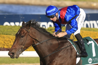 Lost And Running will start a big week for Carl Holt in Saturday's' Everest