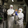 Australian coronavirus vaccine goes into test production