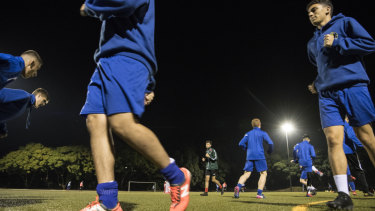 Dulwich Hill FC trains on Arlington Oval's artificial turf