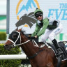 Racing Victoria boss takes swipe at Melburnian support for Everest