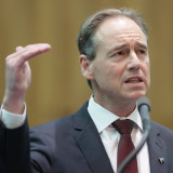 Federal Minister for Health Greg Hunt in Canberra on Tuesday.