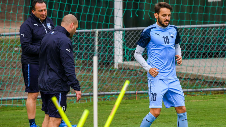 Fitness focus: Milos Ninkovic is being given the opportunity to prove he is ready to play.
