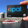 Opal fare evaders exploiting $8m loophole to be stopped