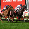 Future stallion Jonker adds group 1 to CV with Manikato Stakes win