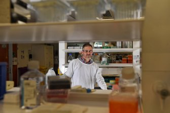 Vaccine researcher Professor James Triccas in a lab at Sydney University.