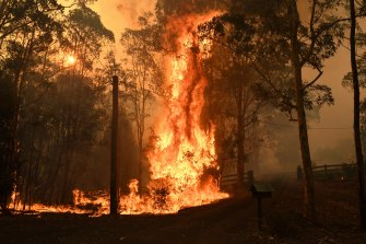 "Australia had its hottest and driest year on record in 2019 - factors that have contributed to what fire agencies say are ""unprecedented"" bushfires this season."