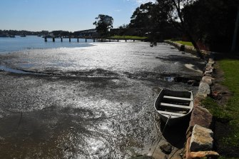 Estuaries along the NSW coast are warming much faster than the air and ocean, and turning more acidic, a new study has found.