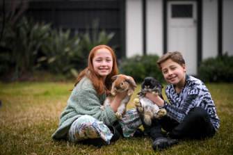 Sienna and Josh Lindeman with their bunnies, Cookie and Bingo.