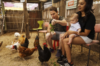 Chicken shoppers Matt and Naomi Whiteley with their daughter Shiloh at New Leaf Nursery in Ingleside.