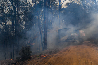 A excavator with a tree harvester head clears dangerous trees from the side of Blaze Road.